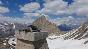 Panorama verso la Rocca la Meja dal Becco Nero